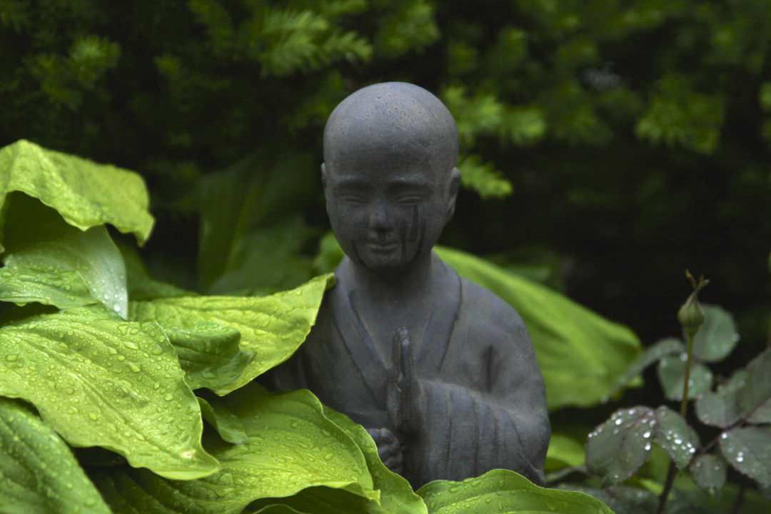 crashkurs-meditation-so-einfach-gehts